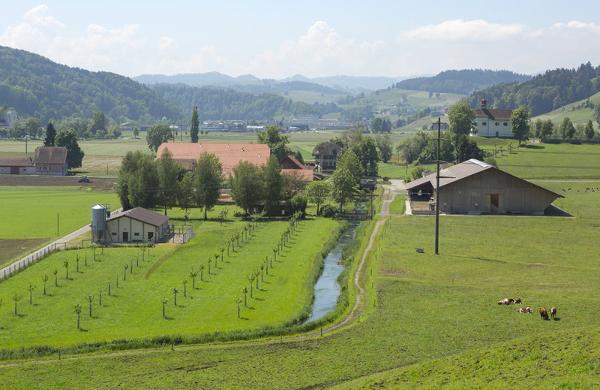 Bauernhof Regiofair